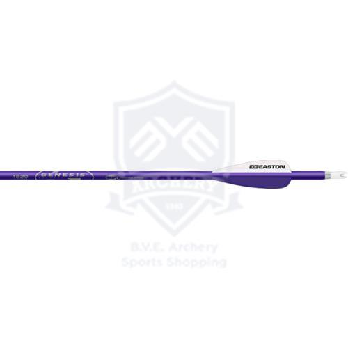 EASTON ARROWS GENESIS 1820