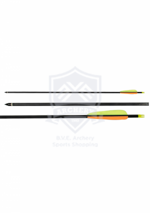 EZ-POELANG ARCHERY ARROWS CARBON 30